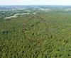 Quimperlé 38, forêt de Toulfouën